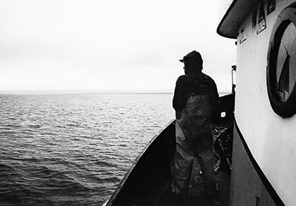 Salmon and the Salish Sea: Stories and Sovereignty